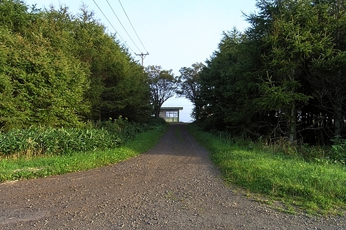 駅前通りと駅舎