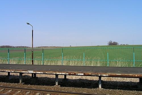 ホームから見える牧草地