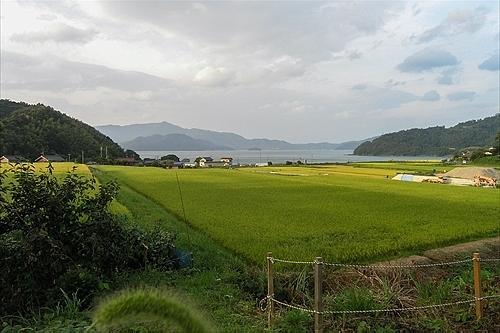 勢浜海水浴場(小浜湾)
