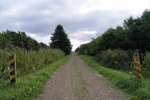 駅前の一本道