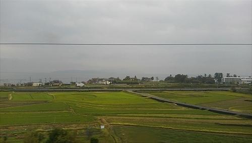 日本海と田んぼ